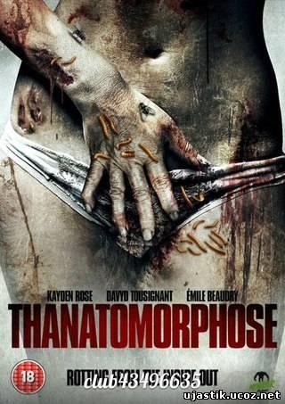 Смотреть самые страшные фильмы, обои ...: gojicheap.ru/smotret-samye-strashnye-filmy.html